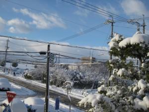 稲沢市の雪
