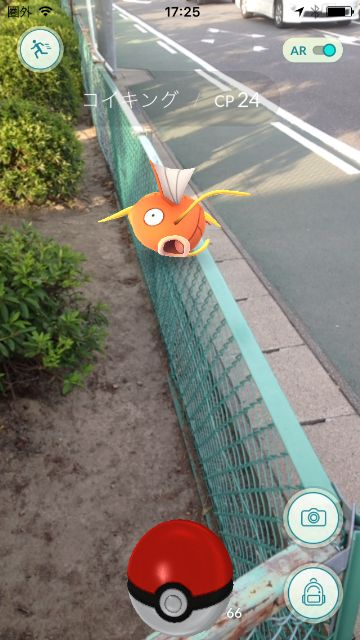 コイキング@稲沢市高御堂公園