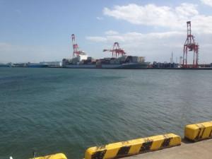 シーバスを狙って飛島、霞ケ浦に行ってきました。