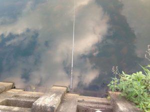 片付けをしていたとき、竿を池に落としてしまいました