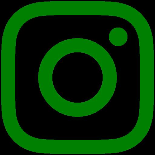 インスタロゴ green #008000