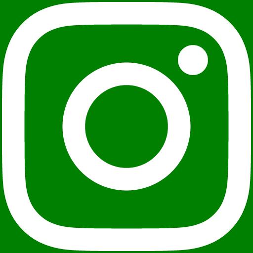 白インスタロゴ 背景色green #008000