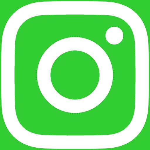 白インスタロゴ 背景色limegreen #32CD32