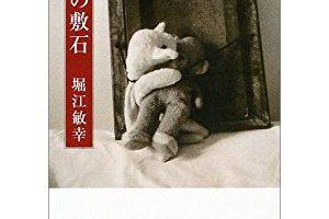 『熊の敷石』を読んだ感想