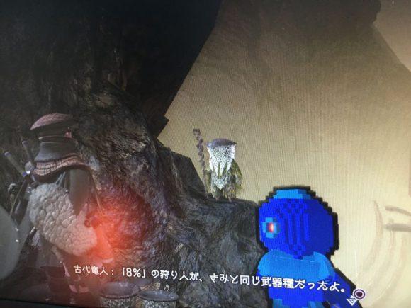 2019/01/16調べ【モンハンワールド】人気武器ランキング4位:双剣