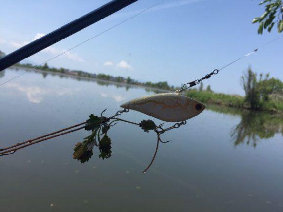 琵琶湖にブラックバス釣りに行きました。琵琶湖、意外と近い