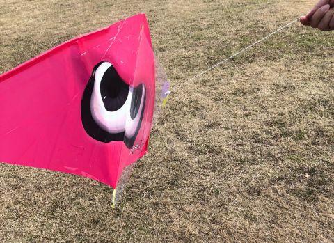 ゲイラカイトのイメージに近いスプラトゥーンの凧