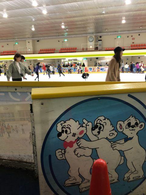 自然と手がつなげる!365日営業中のアイススケートリンク-2