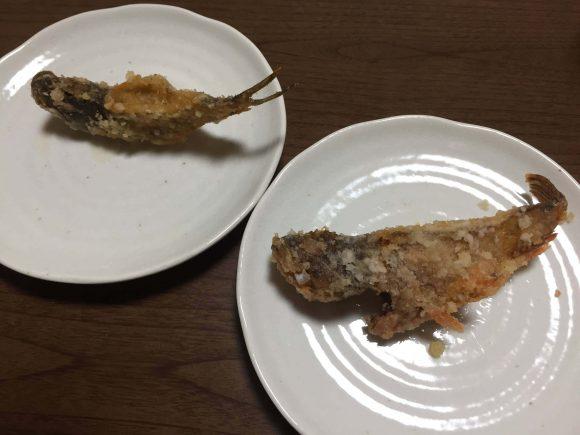 ガラカブは丸ごと天ぷらにして美味しくいただきました